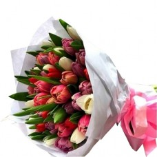 COCO Collection: Mix Tulip Bouquet