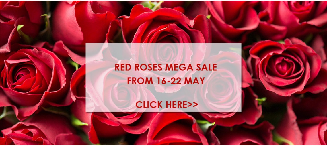 Red Roses Sale Malaysia