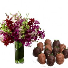 Orchid in Vase arrangement ( 18 stalks) with chocolate covered strawberries