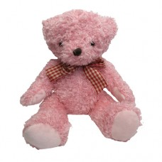 ADD-ON: Mini Teddy 20cm