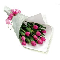 Coco Collection Pink Tulip Bouquet