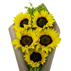 DA VINCI: SUNFLOWER BOUQUET IN CRAFT PAPER