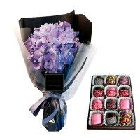 Hydrangea stylish bouquet with Chocolate dipped Marshmallows