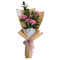 Mother's Day Collection: Carnation bouquet