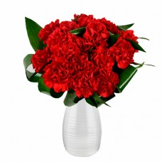 Mozart Collection: Red/Pink/White Carnation Bouquet in Vase