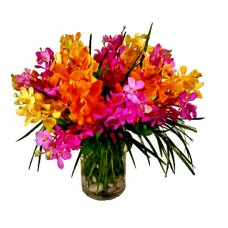 Mother's Day Collection: Cheerful Land: Mix Color Orchid vase arrangement