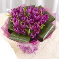 Mother's Day Collection: Fiona: 18 Violet Tulips