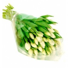 Christine: White Tulip Bouquet