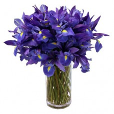 Jazz of Soul: Irises Vase arrangement