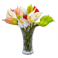 Anthurium Planet: Tropical Flower Bouquet