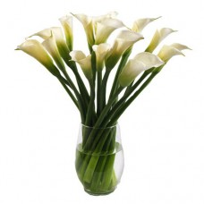Luxury Collection: White Calla Lily Bouquet